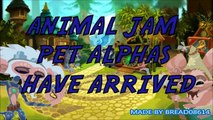 Animal Jam  Funny And Scary Animal Jam Pets   funny pets   funny pets videos