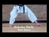 Karate Stances Basic Shotokan Stances Kokutsu Dachi - Back Stance