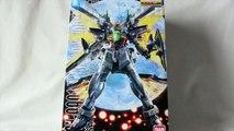 Gundam Review: MG Gundam Double X