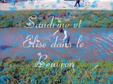 Lamotte Beuvron championnat de France troisiéme partie