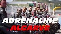 Adrenaline Algarve - Crazy Action Chasing Race Portimao GSXR Vs R1 S1000 Fireblade RSV4 Crash HD Mix