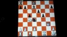 shredder versus mac chess computer | Chess games computer | chess games computer