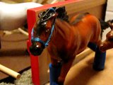 Daybreak Stables Horse Tour: Part 1: 1991-2001 Horses