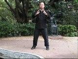 Tai Chi Zen Everywhere: Ziboce Healing Qi Gong for Diabetes