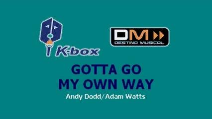 Karaoke Box - Gotta Go My Own Way (In The Style Of / Al Estilo De : High School Musical)