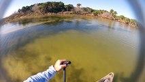 Couple Redfish On Mosquito Lagoon.  Sight Fishing Kayak Fishing GoPro