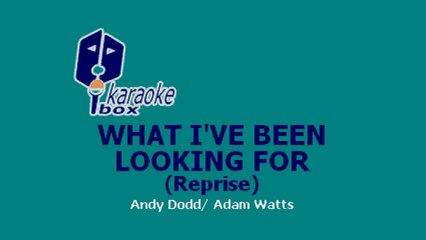 Karaoke Box - What I've Been Looking For (Reprise) (In The Style Of: High School Musical)