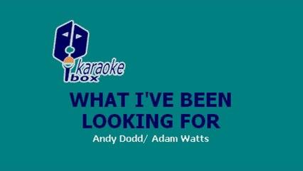 Karaoke Box - What I've Been Looking For (In The Style Of / Al Estilo De : High School Musical)