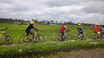 Bali Cycling Tour - Bali Cycling Adventure - Bali Cycling Trip - Bali Down Hill Cycling - Bali Cycling Tour - Alam Amazing Adventures