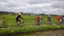 Bali Cycling Tour - Bali Cycling Adventure - Bali Cycling Trip - Bali Down Hill Cycling - Bali Cycling Tour - Alam Amazing Adventures
