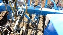Semis de carottes en France - Seeding of carrots in France