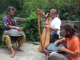 Hang drum and celtic harp percussion