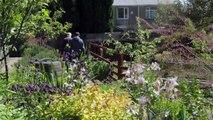 St Peter's Community Garden, Cardiff