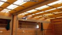 DJI Phantom Phoenix R/C Flight Simulator - video dailymotion