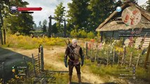 The Witcher 3 Wild Hunt Witcher contract Jenny o' the Woods