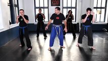 Krav Maga Training|How to Do a Side Kick|Self Defense Fight Techniques