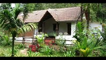 India Karnataka Madikeri Rainforest Retreat India Hotels India Travel Ecotourism Travel To Care