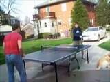 Table Tennis: Ping Pong 2