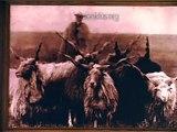 "502 Hortobágy ""Lóra csikós lóra"" archive photographs and singing from the Hungarian plain"