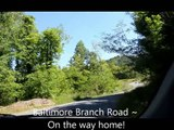 Tinkerbell Land For Sale Spring Creek North Carolina (land for sale near Asheville North Carolina)