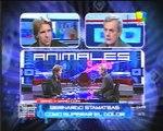 Animales Sueltos Fantino entrevista a Stamateas MundoEva 001.avi