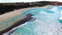 Des dauphins s'amusent à surfer des vagues en Australie