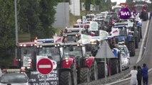 Les Jeunes Agriculteurs de la Manche restent mobilisés [TéVi] 15_09_10
