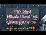 NND Kaneko Shiro Utsuri Tategoi selection