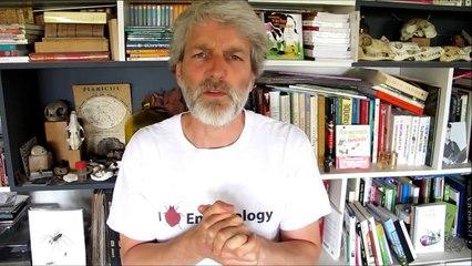 Vidéo de François Lasserre