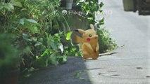 Attrapez des Pokémons dans la vie réelle avec l'app smartphone Pokémon GO