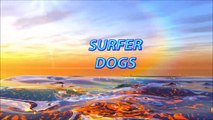 SURF DOG - SURFING DOG - SURFER DOGS- SURF DOG WIPE OUTS - HYSTERICAL VIDEO