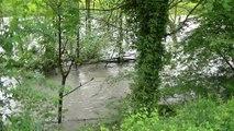 Inondation des berges par l'Isère - Igloo berger blanc suisse - Jörg Berger allemand ancien type