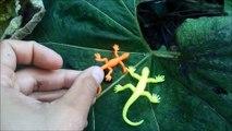 lizard toys walking around jouets lezards pour enfants animaux