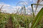 Les Terres de Jim : la plus grande fête agricole en plein air d'Europe à Marly-Frescaty