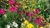 En Touraine, mon village est un jardin