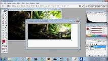 Photoshop Beginner Tutorial- Croping Using Lasso Tool