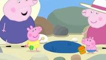 Peppa Pig En Francais Les Flaques D Eau De Mer Dessins