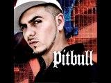 Pitbull Bojangles Remix Feat Ying Yang Twins And Lil Jon