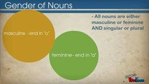 Spanish 1 - Gender of Nouns and definite articles