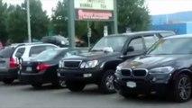 NEW - Dog Beeps / Honks Car Horn - Funny Dog Beeps Horn | NEW September 2015