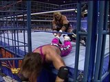 Bret Hart vs. Owen Hart (Summerslam 1994)
