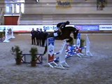 L'ARC DE TRIOMPHE / PAPILLON ROUGE - FIRST RIDDEN JUMPS