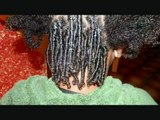 Dreads for African American, Chinese, Asian, Indian, Hispanic, Caucasian,  any Hair by BEE