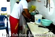 How to prepare Fresh Fish with a White Wine Cream Sauce
