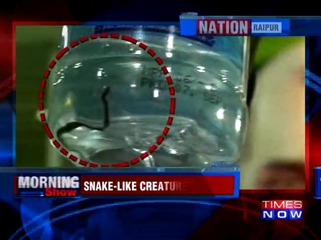 Snake Found In Water Bottle Served To CM Dr Raman Singh