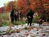 """grizzly falls"" "" la legende de l'ours""  (Rhodesian Ridgeback )"