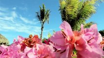 Valentin Perla Blanca - Cuba - Vacances TMR