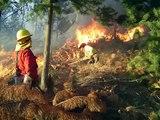 Incendios Forestales - Talca - Chile