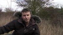 Cambridge FilmWorks - Starlings