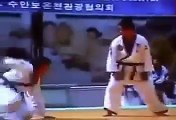 Hapkido Techniques   Hapkido Self Defense   Hapkido vs Taekwondo   Kim Jin Pal